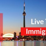 Importance of Immigration consultant